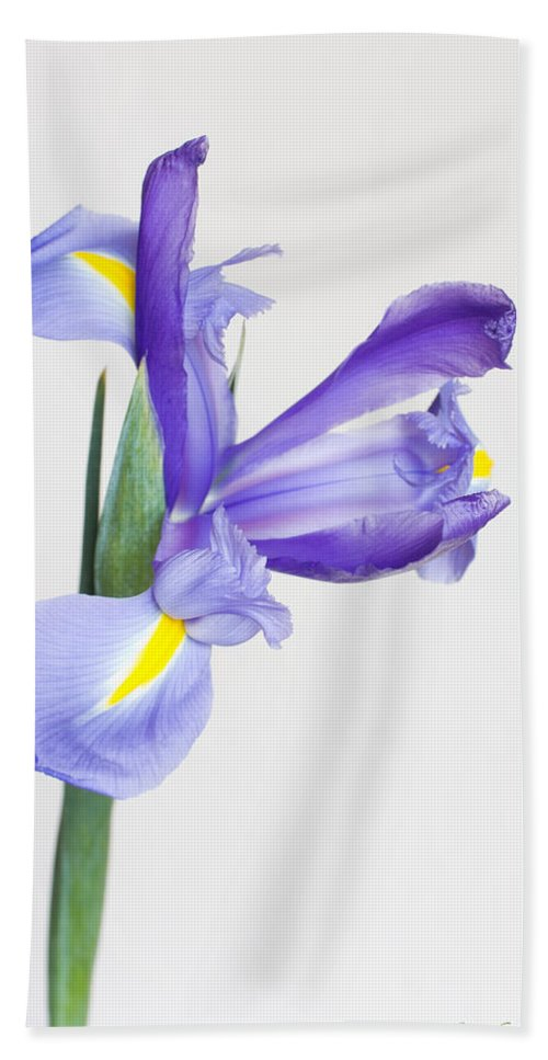 One Hand Towel featuring the photograph Radiate by Heidi Smith