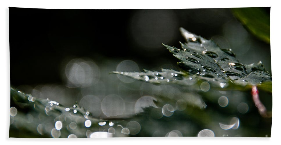 Leaves Hand Towel featuring the photograph Rain Drop Bokeh by Cheryl Baxter