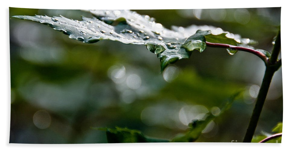 Leaves Hand Towel featuring the photograph Rain Sparkles by Cheryl Baxter