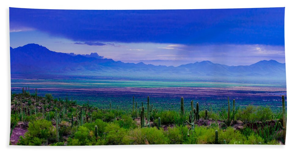 Rainbow Bath Sheet featuring the photograph Rainbow Desert Landscape by Michael Moriarty