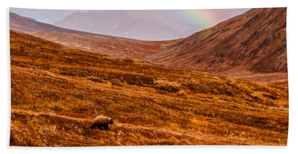 Ursus Arctos Horribilis Hand Towel featuring the photograph Rainbow Over Grizzly In Denali by Jeff Folger