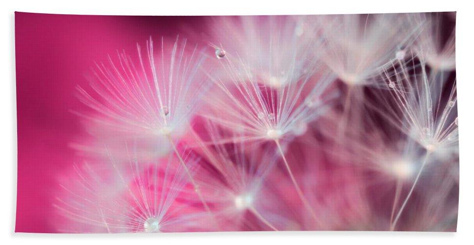 Raindrops On Dandelion Hand Towel featuring the photograph Raindrops On Dandelion Magenta by Marianna Mills