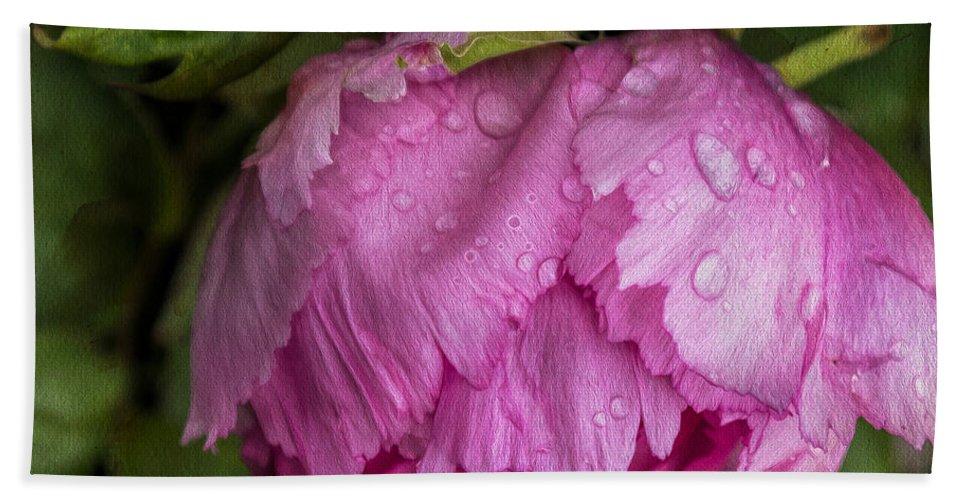 Raindrops Bath Sheet featuring the photograph Raindrops On Peony by Gillian Singleton