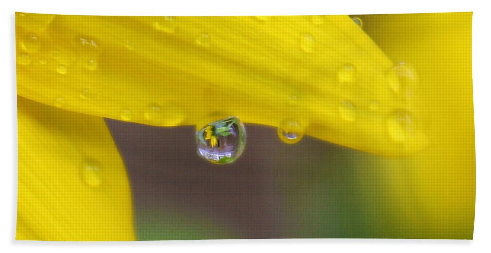 Flowers Hand Towel featuring the photograph Reflection In The Rain by Nina Silver