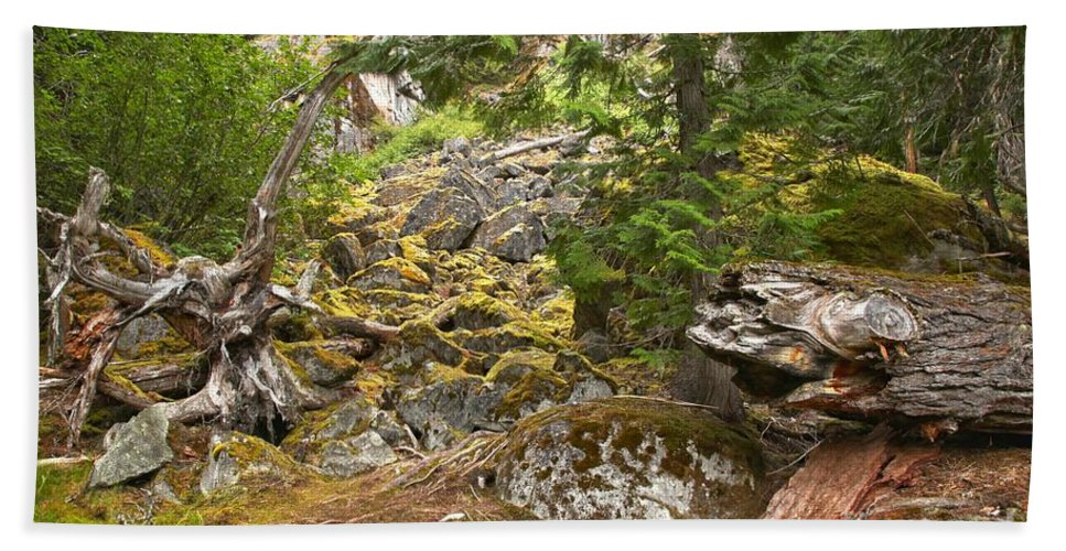Cheakamus Rainforest Bath Sheet featuring the photograph Rainforest Rock Slide by Adam Jewell