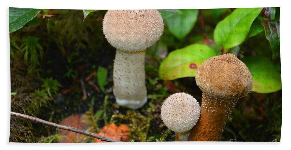 Mushrooms Bath Sheet featuring the photograph Rainforest 'shrooms by Deanna Cagle