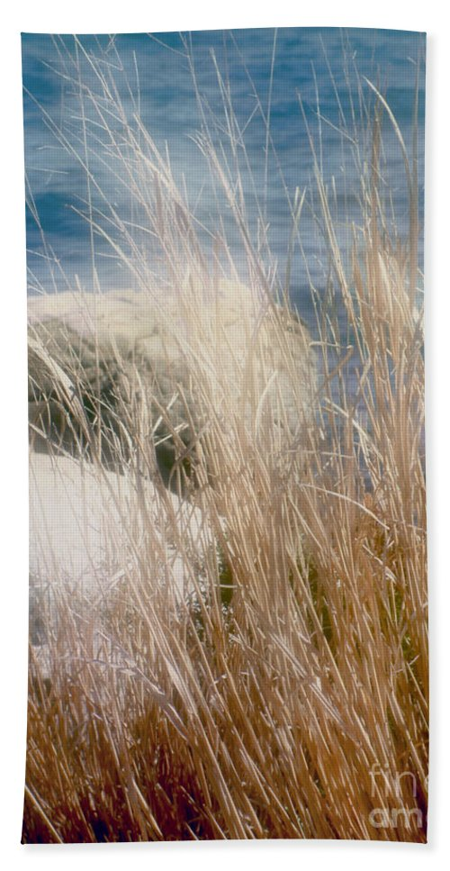 Reeds Hand Towel featuring the photograph Rapunzel Reeds by RC DeWinter