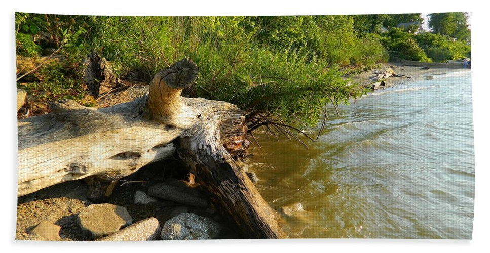 Driftwood Hand Towel featuring the photograph Raw Lake Erie Shore by Kathy Barney