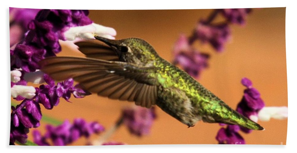 Point Reyes Bath Sheet featuring the photograph Reaching For The Nectar by Adam Jewell