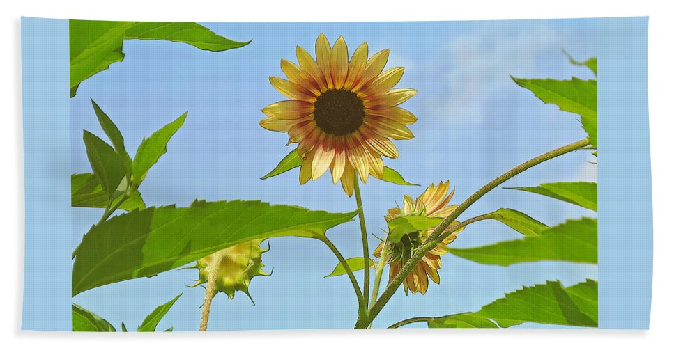 Flower Bath Sheet featuring the photograph Reaching For The Sky by Ann Horn