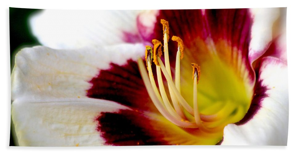 #lily Bath Sheet featuring the photograph Reaching Out by Debbie Nobile