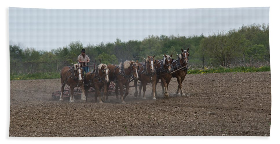 Amish Bath Sheet featuring the photograph Ready The Ground 1 by David Arment