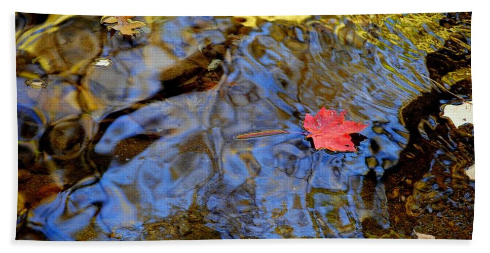 Red Hand Towel featuring the photograph Red Blue And Gold by Frozen in Time Fine Art Photography