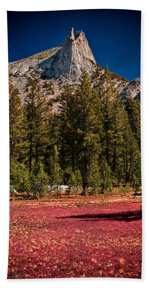 Red Mountains Yosemite national Park Trees Scenic Landscape Nature sierra Nevada Mountain California Rock Granite Climbing Bath Sheet featuring the photograph Red Carpet by Cat Connor