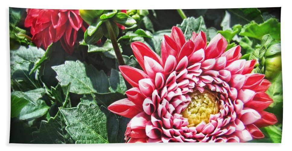 Flowers Hand Towel featuring the photograph Red Floral by Alice Gipson