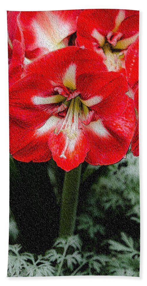 Flower Hand Towel featuring the photograph Red Flower With Starburst by Crystal Wightman