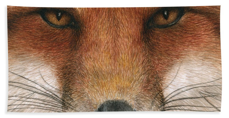 Fox Hand Towel featuring the painting Red Fox Gaze by Pat Erickson