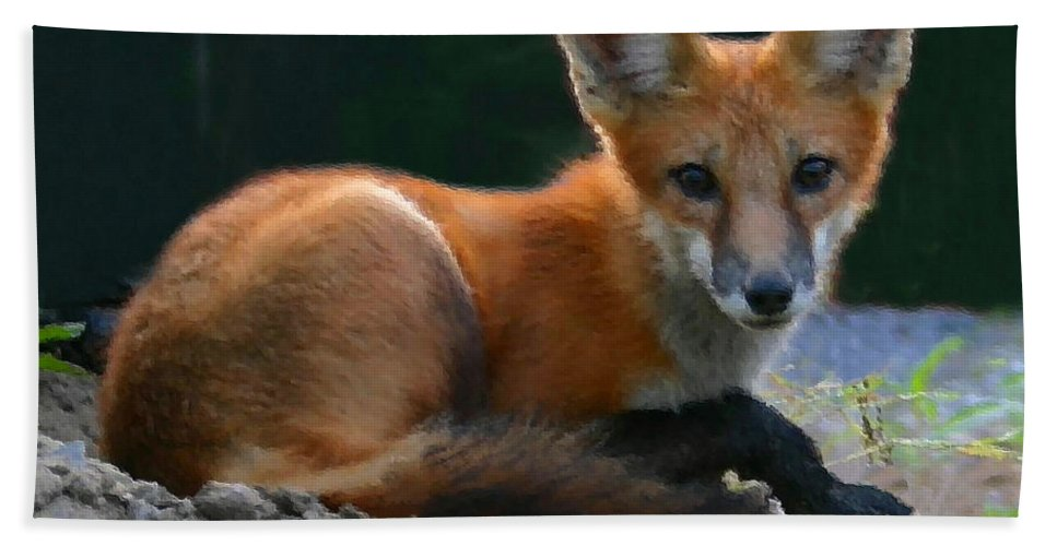 Red Fox Hand Towel featuring the photograph Red Fox by Kristin Elmquist