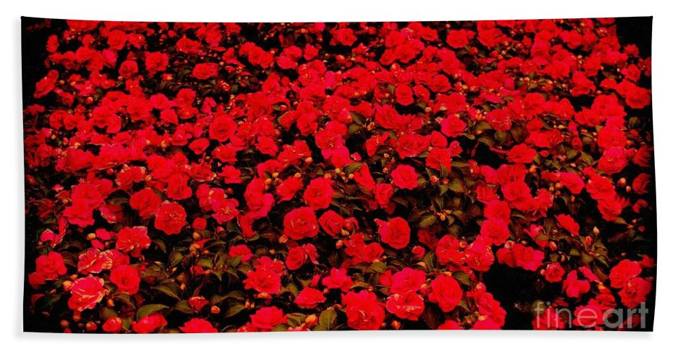 Red Impatiens Flowers Hand Towel featuring the photograph Red Impatiens Flowers by Barbara Griffin