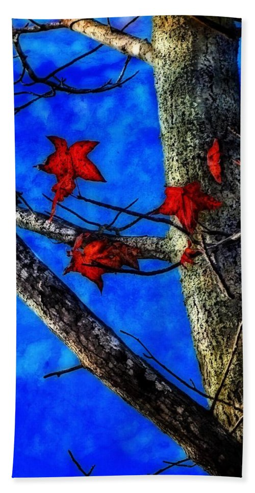Rebecca Korpita Hand Towel featuring the photograph Red Leaves Blue Sky In Autumn by Rebecca Korpita