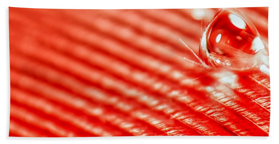 Feather Bath Sheet featuring the photograph Red Lined by Lauri Novak