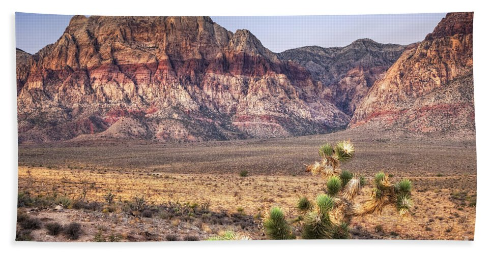 Las Vegas Hand Towel featuring the photograph Red Rock Canyon Lv by Timothy Hacker
