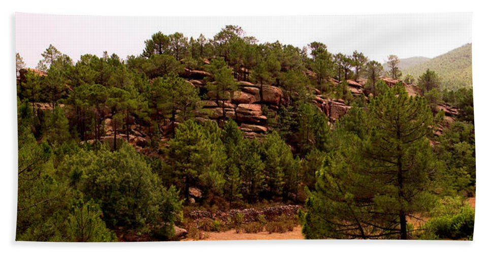 Red Rock Hand Towel featuring the photograph Red Rock Green Forest No3 by Weston Westmoreland