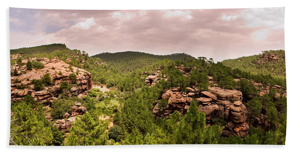 Red Rock Hand Towel featuring the photograph Red Rock Green Forest No2 by Weston Westmoreland
