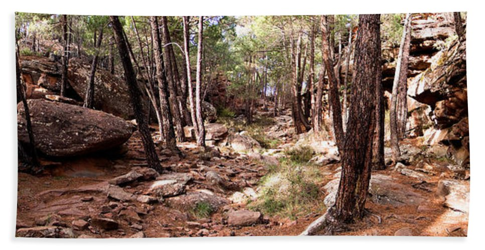 Red Rock Hand Towel featuring the photograph Red Rock Pine Forest by Weston Westmoreland