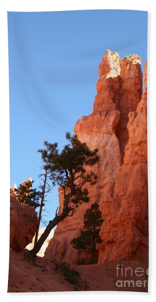 Canyon Bath Sheet featuring the photograph Red Rocks Of Bryce Canyon by Christiane Schulze Art And Photography