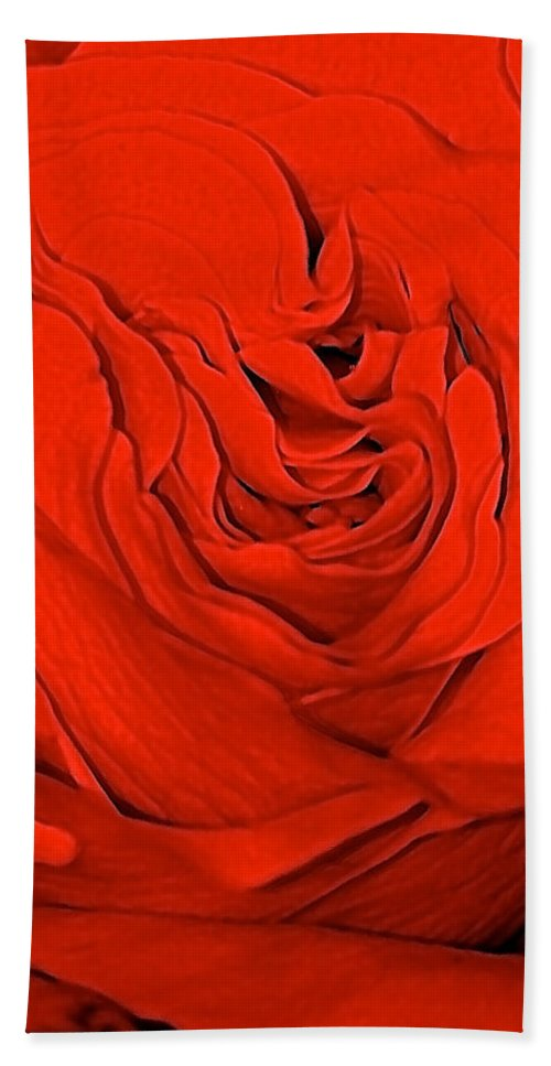Red Hand Towel featuring the photograph Red Rose by Gillis Cone