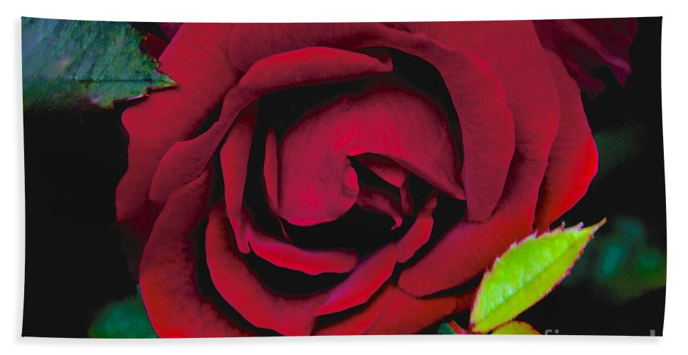 Red Hand Towel featuring the Red Rose by William Norton