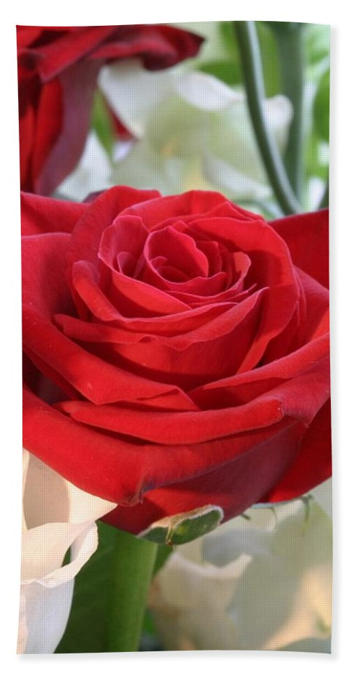 Rose Hand Towel featuring the photograph Red Rose With Garden Background by Taiche Acrylic Art