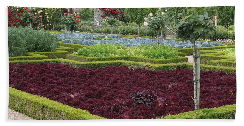 Salad Hand Towel featuring the photograph Red Salad And Roses - Chateau Villandry Garden by Christiane Schulze Art And Photography
