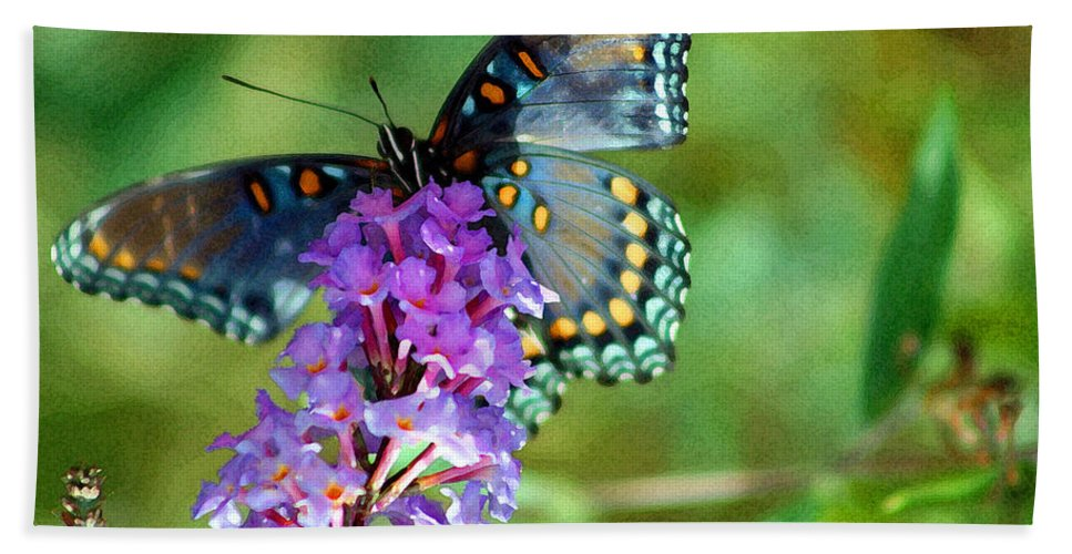 Bath Sheet featuring the photograph Red Spotted Purple Butterfly Photopainting by Karen Adams