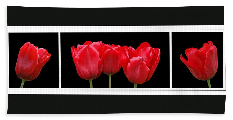 Tulip Hand Towel featuring the photograph Red Tulip Triptych by Gill Billington