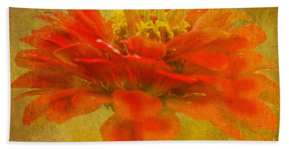 Zinnia Bath Sheet featuring the photograph Red Zinnia Essence by Carol F Austin