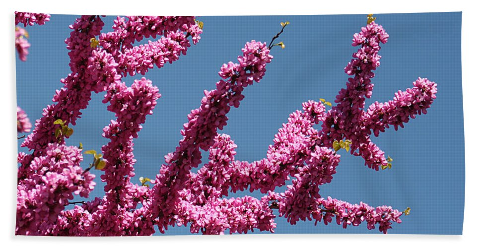 Nature Bath Sheet featuring the photograph Redbud Against Blue Sky by William Selander