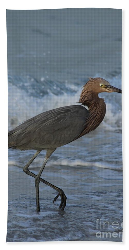 Reddish Egret Hand Towel featuring the photograph Reddish Walking The Surf by Christiane Schulze Art And Photography