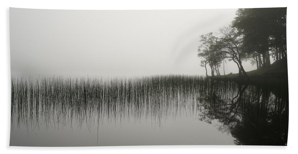Mist Hand Towel featuring the photograph Reeds And Shore In The Mist by Gary Eason