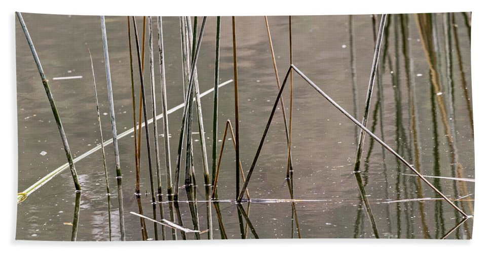 Abstract Bath Sheet featuring the photograph Reeds by Kate Brown