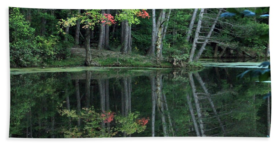 Landscape Bath Sheet featuring the photograph Reflection by Bruce Patrick Smith
