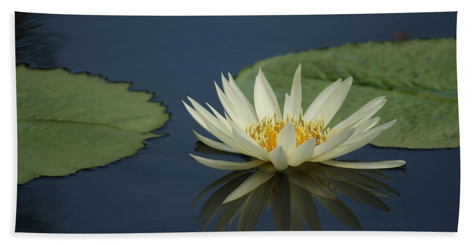 Reflection Bath Sheet featuring the photograph Reflection In Time...  # by Rob Luzier