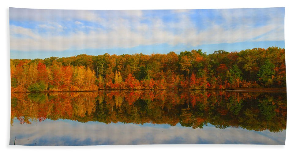 Foliage Hand Towel featuring the photograph Reflection Of The Fall by Roger Becker