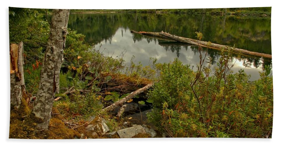 Starvation Lake Hand Towel featuring the photograph Reflections In Starvation Lake by Adam Jewell
