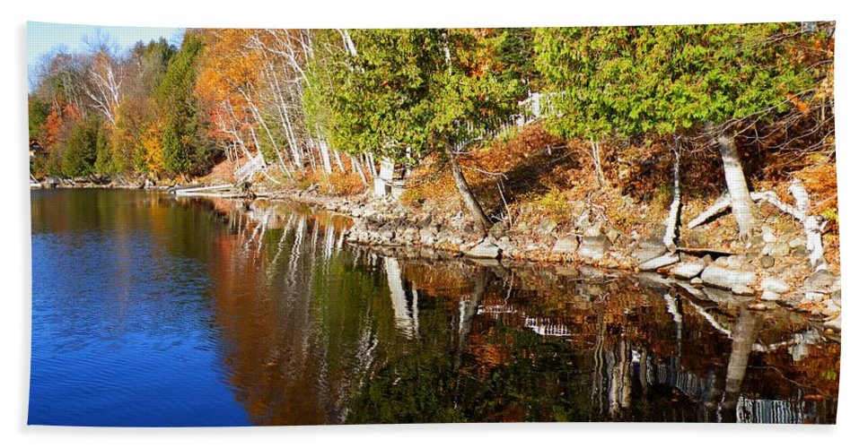 Nature Hand Towel featuring the photograph Reflections In Water by Davandra Cribbie