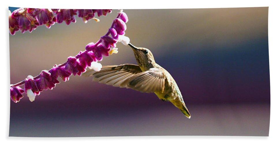 Hummingbird Bath Sheet featuring the photograph Refueling by Joe Schofield