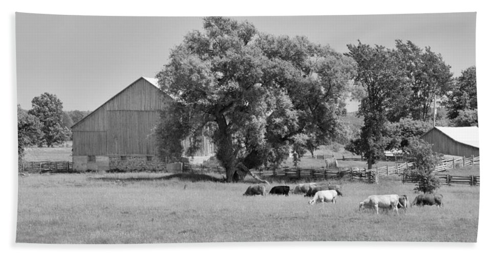 Barn Bath Sheet featuring the photograph Reive Blvd Barn 15059b by Guy Whiteley