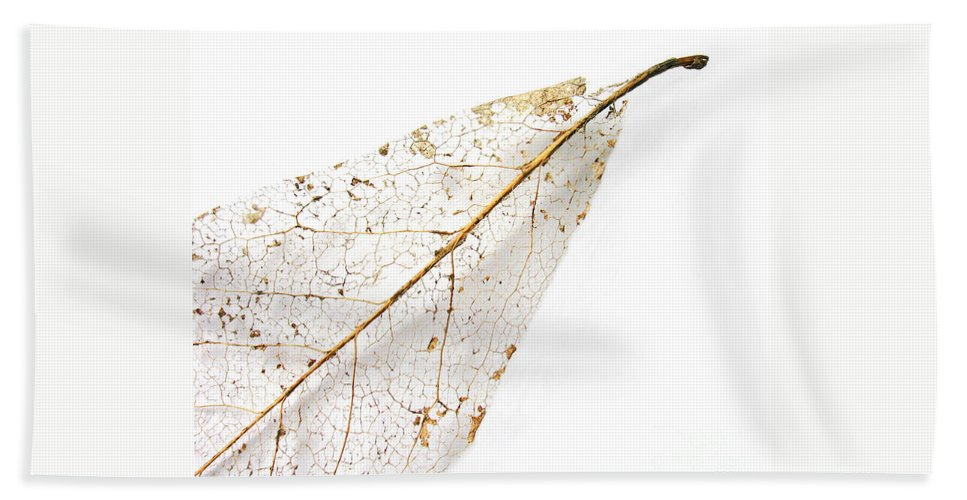 Leaf Bath Towel featuring the photograph Remnant Leaf by Ann Horn