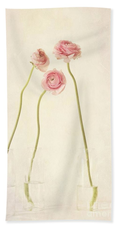 Still Life Bath Towel featuring the photograph Renoncules by Priska Wettstein